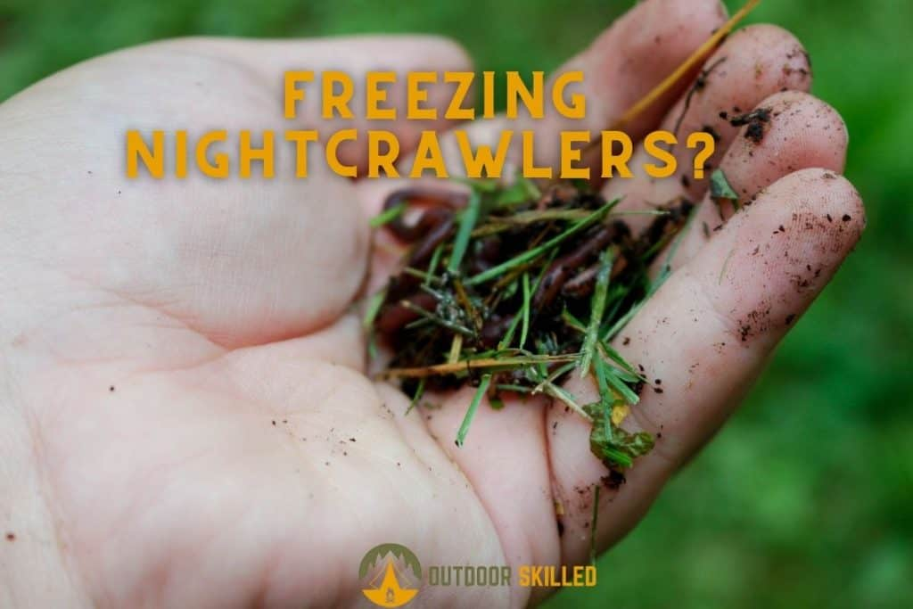 man holding night crawlers to illustrate how can night crawlers be frozen