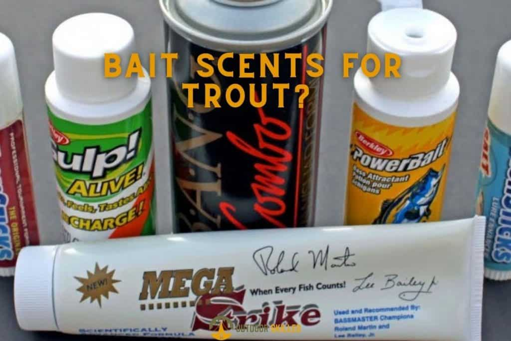 some bait scents to show what scents do trout like