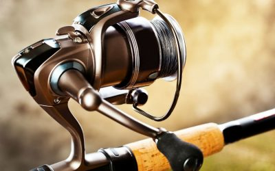 Best Bass Spinning Reels