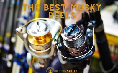Best Musky Reels featured