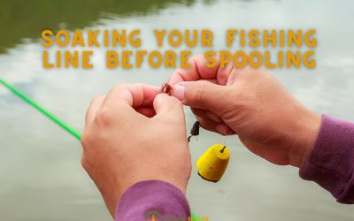 Do-you-need-to-soak-the-fishing-line-before-spooling-featured