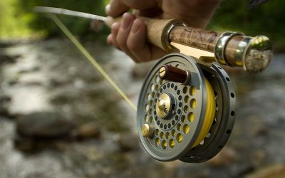 How to Pick a Fishing Reel