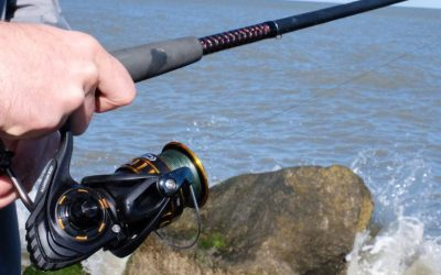 How to Pick a Spinning Reel