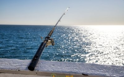 are-telescopic-fishing-rods-bad-featured