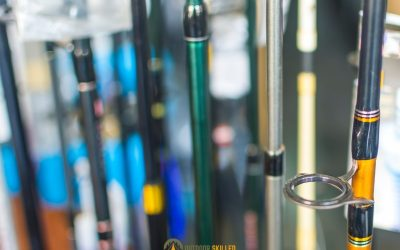 bass-fishing-rods-selection-guide