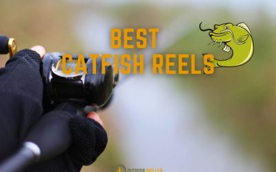 best catfish reels featured