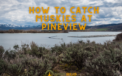 catch-tiger-muskies-at-pineview