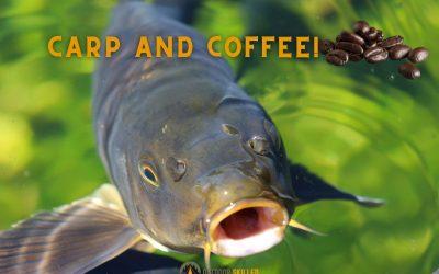 do-carp-like-coffee-featured-image