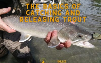 how-to-catch-and-release-trout-safely-featured