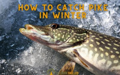 how-to-catch-pike-in-winter-featured