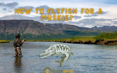 how-to-fly-fish-for-a-muskie