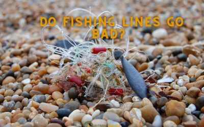 is-my-fishing-line-still-good-featured