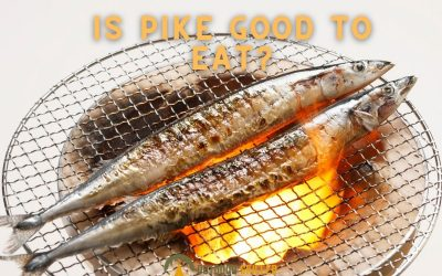 is-pike-good-to-eat-featured