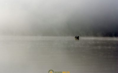 trout-fishing-in-foggy-weather
