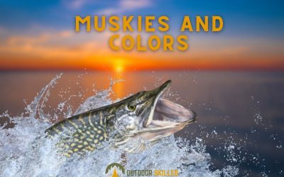 what-colors-do-muskies-see-featured
