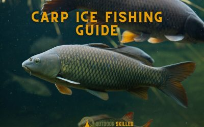 where-do-carp-go-under-the-ice-carp-ice-fishing-guide-featured-image